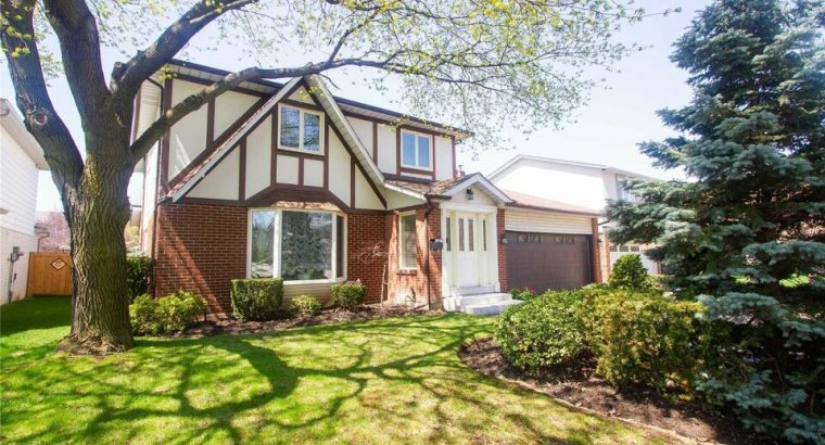 Toronto Fixer Upper Homes