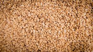 sesame seed (FOR EXPORT TO CANADA AND AMERICA)