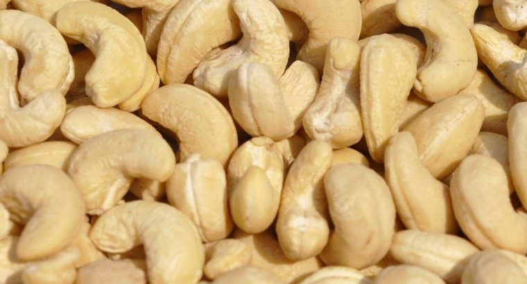 Indian Organic Whole Cashews Nuts (FOR EXPORT TO CANADA AND AMERICA)