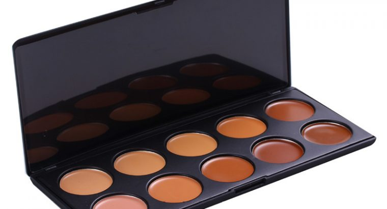 Private label 10 Colors Camouflage Concealer