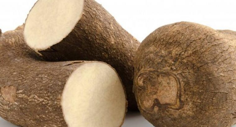 Pona yam for  (export to Canada and America)